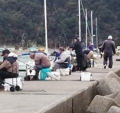 富浦新港当日の様子