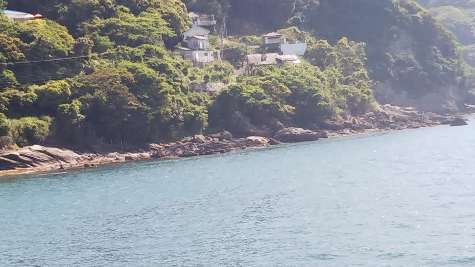小浦港での釣り