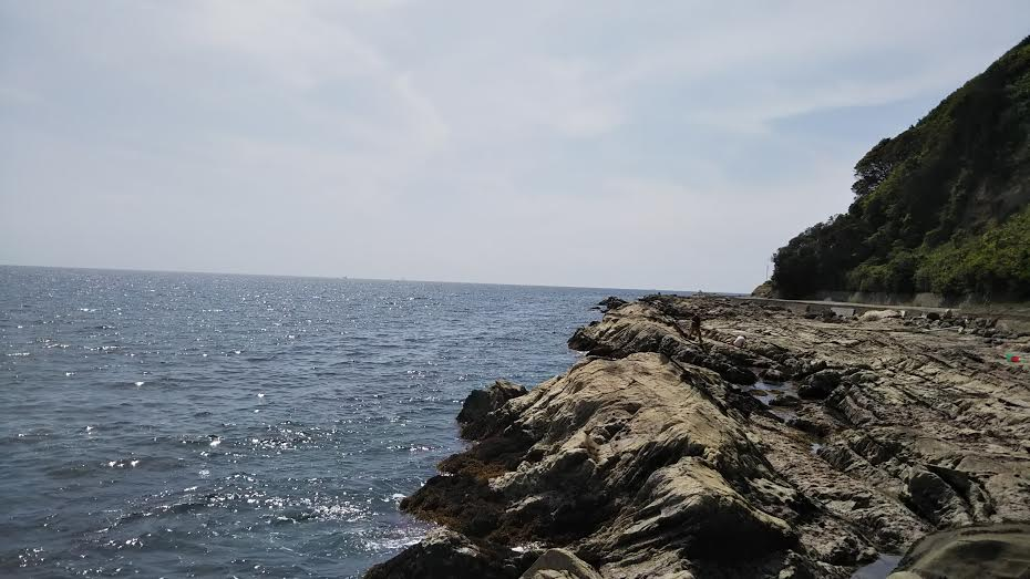 岩井袋の磯の画像