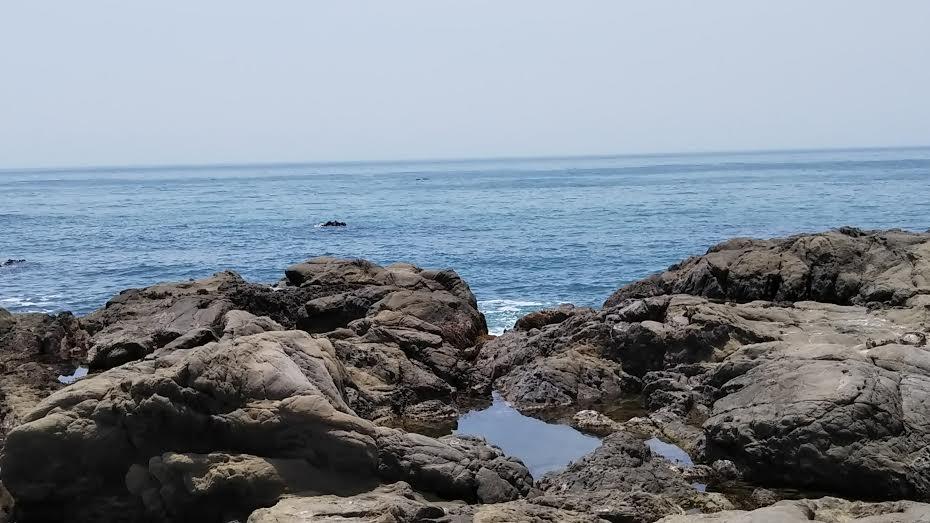 江見港の外海側