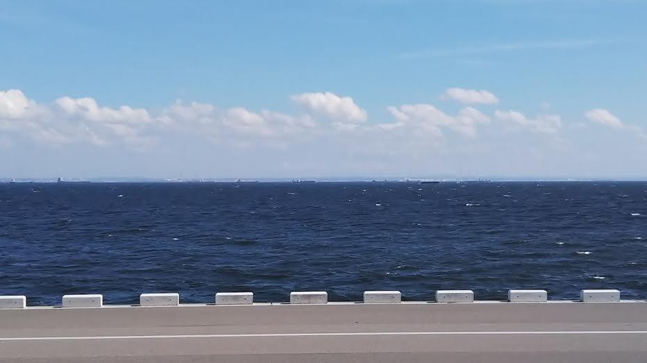 浦安の護岸