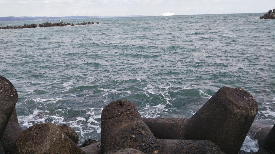 和田港のテトラ