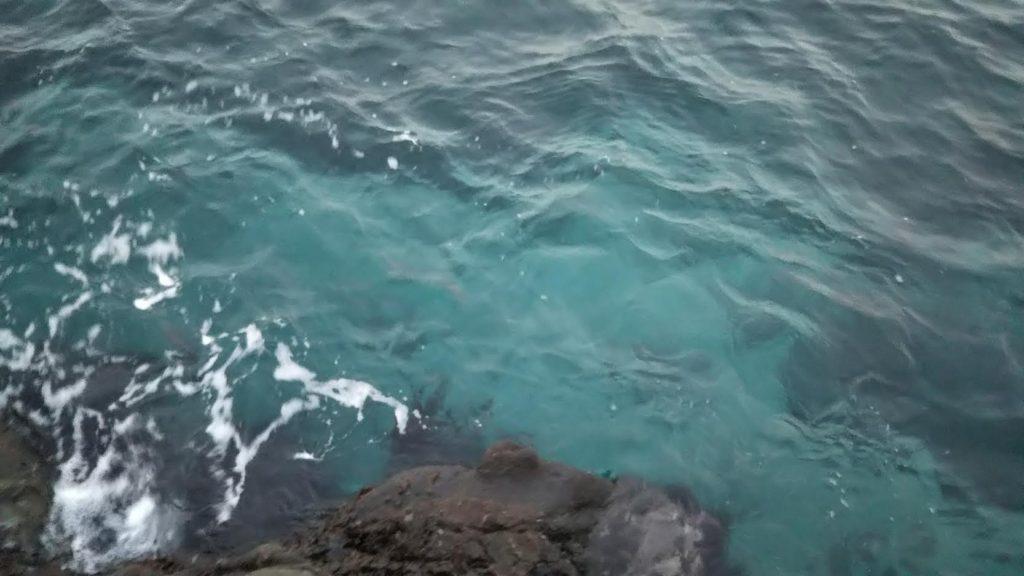 澄みきった潮
