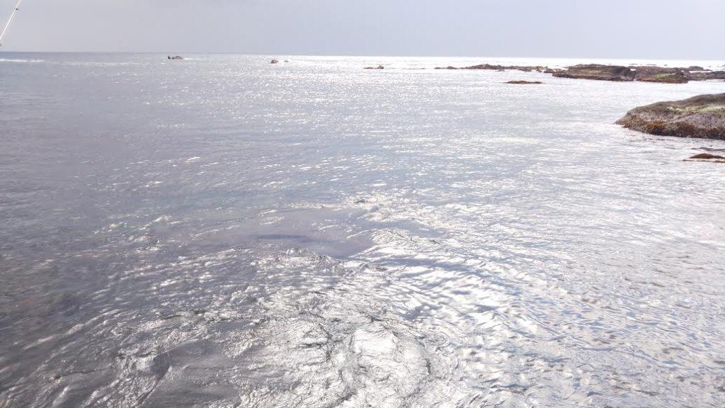 ベタナギの海