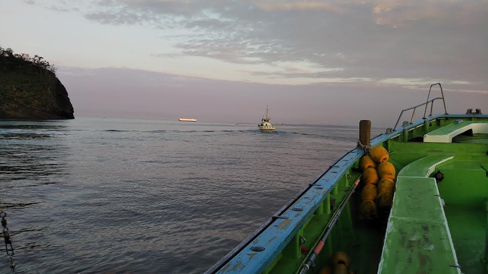 沖のアジ釣り