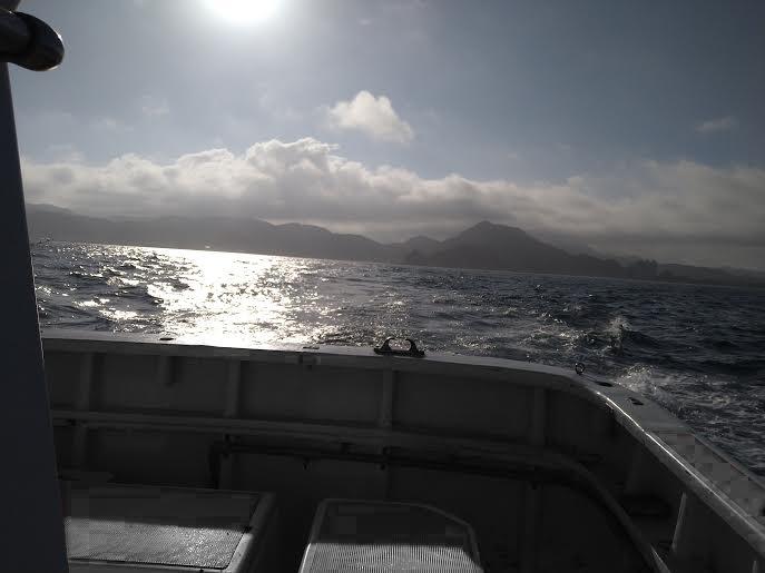 アジの船釣り