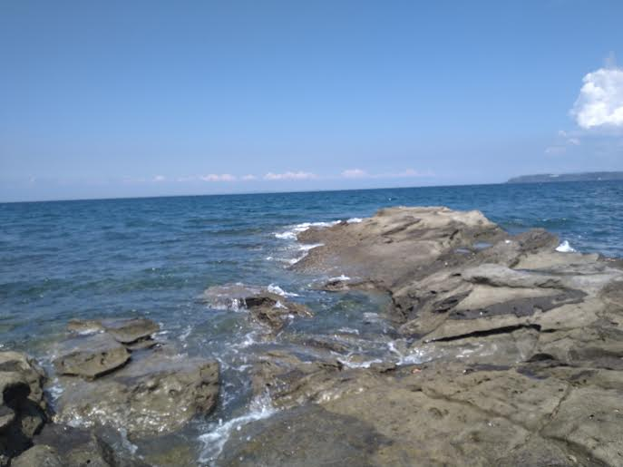 館山の岩礁帯