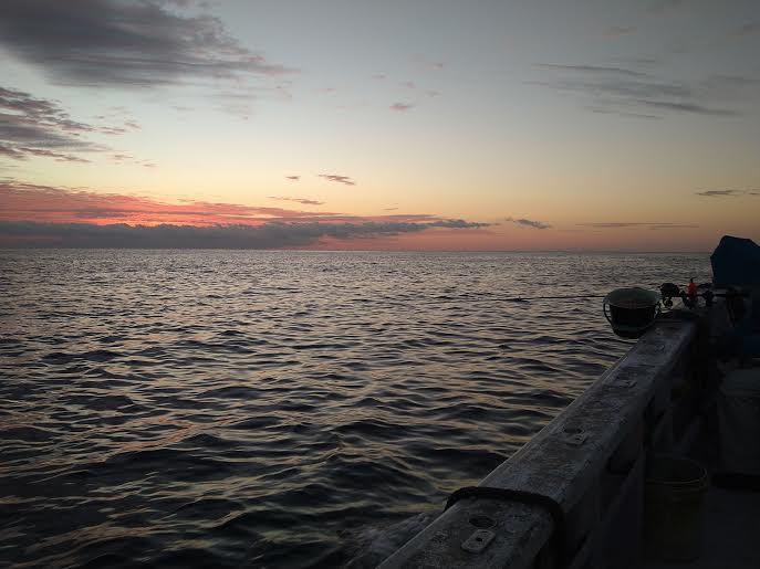 鴨川での船釣り