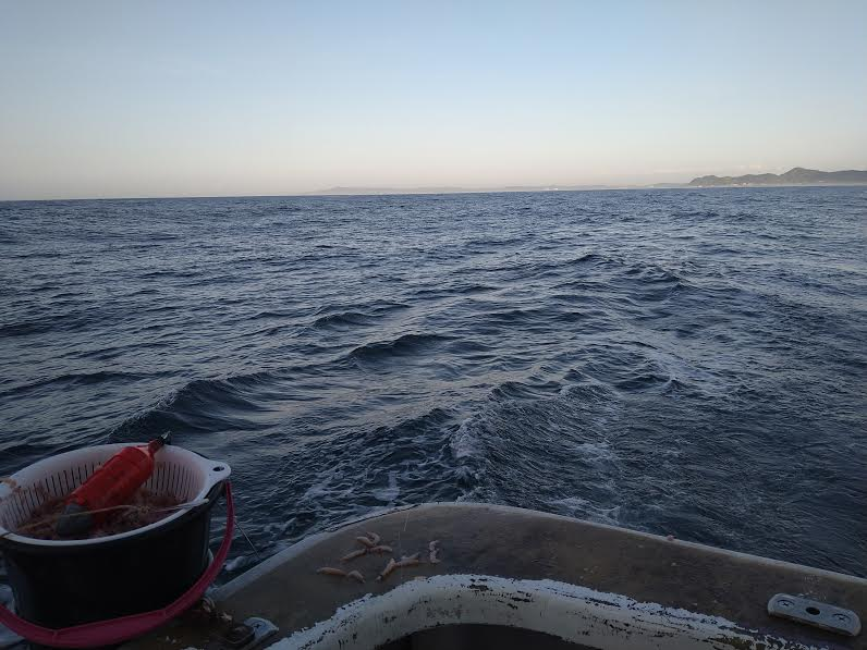 釣り船「八平丸」